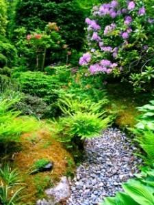 Garden_Path_119