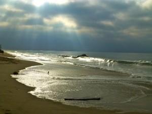 Ocean_Rays_1130061