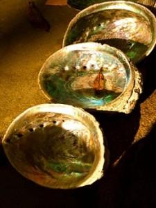 Abalone_Shells_9064