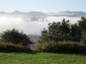 Misty_Valley_P0003